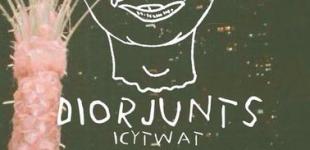 ALBUM: LIL GLO FENDI (ICYTWAT) - Dior Junts